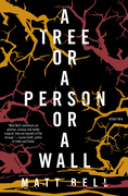 A Tree or a Person or a Wall