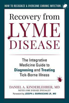 Recovery from Lyme Disease