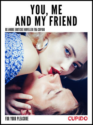 You, Me and my Friend - and other erotic short stories