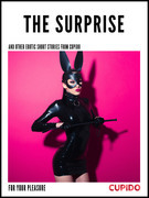 The Surprise - and other erotic short stories