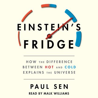 Einstein's Fridge