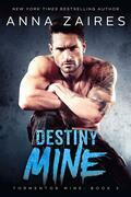 Destiny Mine: Tormentor Mine: Book 3