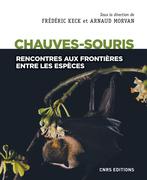 Chauves-souris - Rencontres aux frontières entre les espèces