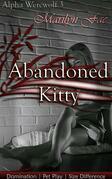 Abandoned Kitty