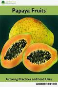 Papaya Fruits