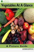 Vegetables At A Glance