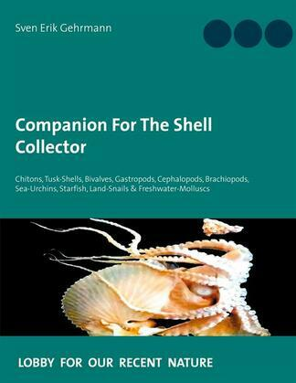 Companion For The Shell Collector