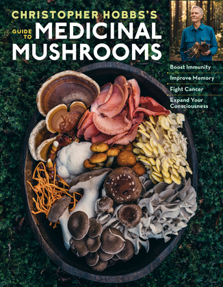Christopher Hobbs's Medicinal Mushrooms: The Essential Guide