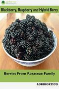 Blackberry, Raspberry and Hybrid Berry