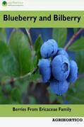 Blueberry and Bilberry