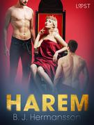 Harem - Erotic Short Story