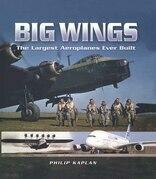 Big Wings
