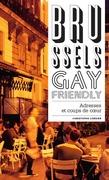 Brussels Gay Friendly