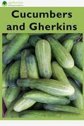 Cucumbers and Gherkins