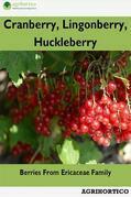 Cranberry, Lingonberry, Huckleberry