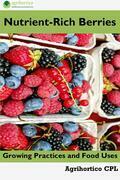 Nutrient-Rich Berries
