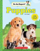 Puppies (Be An Expert!)