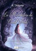 Le Destin des Coeurs Perdus, tome 5 : La Malédiction de Castel Dark