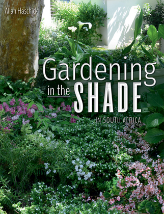 Gardening in the Shade in South Africa