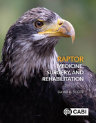 Raptor Medicine, Surgery, and Rehabilitation