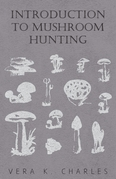 Introduction to Mushroom Hunting
