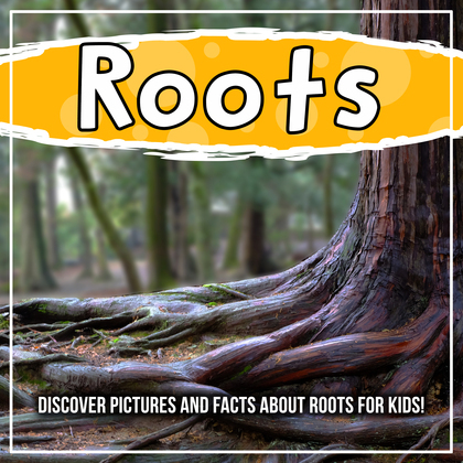 Roots: Discover Pictures and Facts About Roots For Kids!
