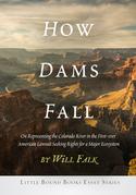 How Dams Fall