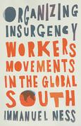 Organizing Insurgency