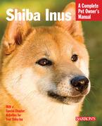Shiba Inus