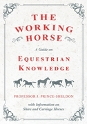 The Working Horse - A Guide on Equestrian Knowledge with Information on Shire and Carriage Horses