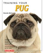 Training Your Pug