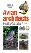 Quick ID Guide – Avian Architects
