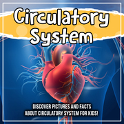 Circulatory System: Discover Pictures and Facts About Circulatory System For Kids!