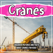 Cranes: Discover Pictures and Facts About Cranes For Kids!