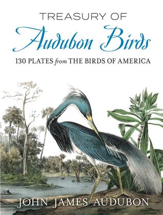 Treasury of Audubon Birds