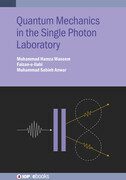 Quantum Mechanics in the Single Photon Laboratory