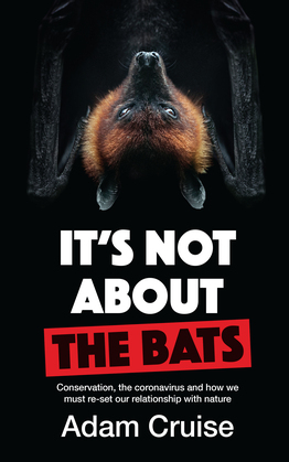 It's Not About the Bats