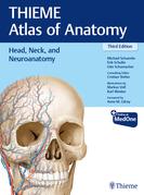 Head, Neck, and Neuroanatomy (THIEME Atlas of Anatomy)