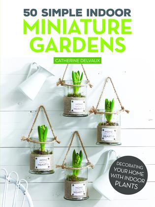 50 Simple Indoor Miniature Gardens