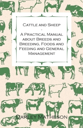 Cattle and Sheep - A Practical Manual about Breeds and Breeding, Foods and Feeding and General Management