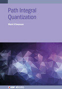 Path Integral Quantization