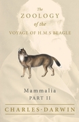 Mammalia - Part II - The Zoology of the Voyage of H.M.S Beagle