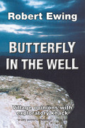 Butterfly in the Well