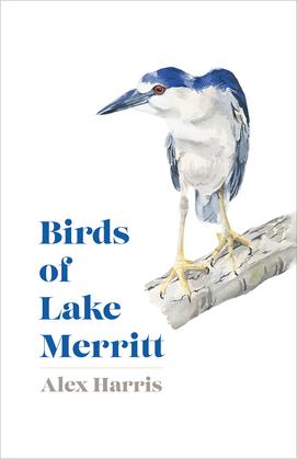Birds of Lake Merritt