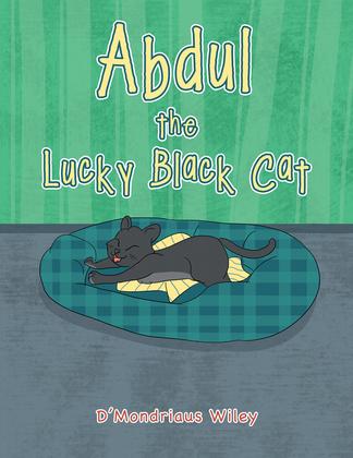 Abdul the Lucky Black Cat