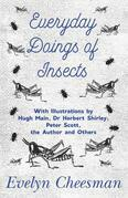 Everyday Doings of Insects - With Illustrations by Hugh Main, Dr Herbert Shirley, Peter Scott, the Author and Others