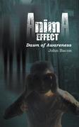 Anima Effect