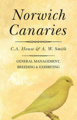 Norwich Canaries