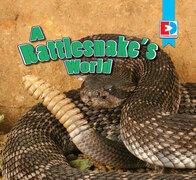 A Rattlesnake's World