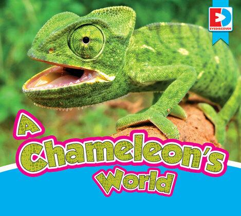 A Chameleon's World